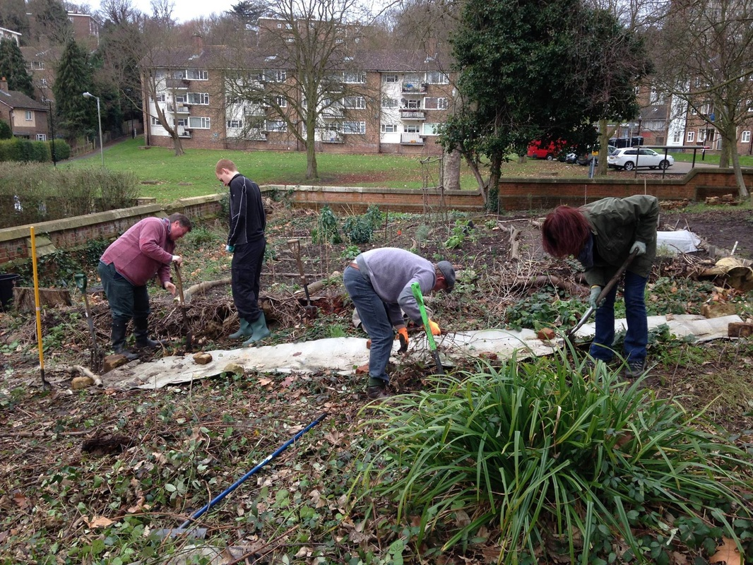 Volunteers gardening in winter